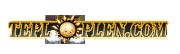 02. Логотип «ТеплоПлен»